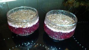 Dark chocolate and coconut jello  (2.8 net carbs )