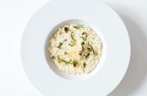 Gourment Mushroom Risotto