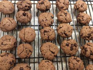 Paleo Low Sugar Chocolate Chip Cookies