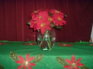 Christmas Night Fruitcake