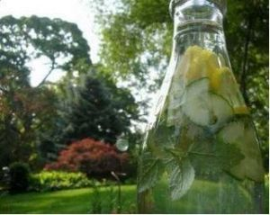 Lemon Mint Cucumber Spritzer