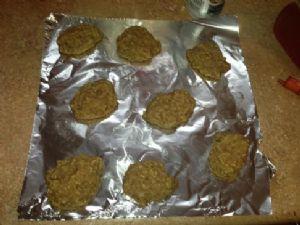 Oatmeal Applesauce Low Fat Cookies