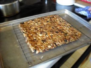 dried fruit and nut granola bar