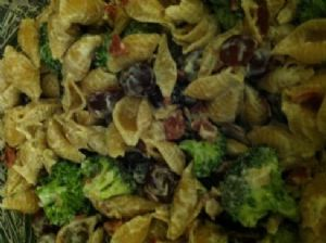 Pasta Salad with red grapes and broccoli