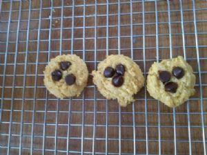 Atkins like Vanilla-Almond Butter Cookies