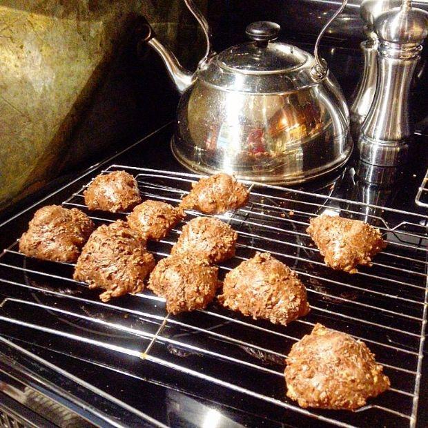 Chocolate Oatmeal Raisin Chia Nut Cookies