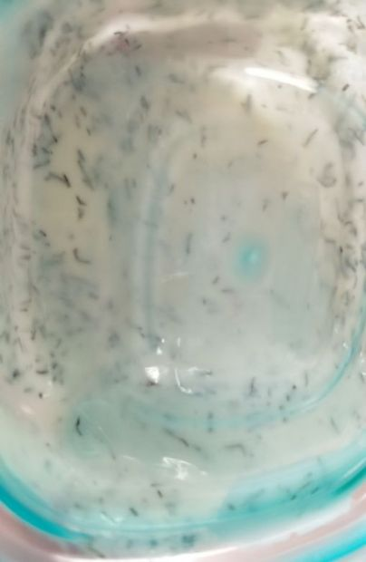 Greek yogurt dill dipping sauce
