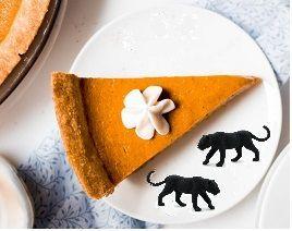 Holley's Healthy Homemade Pumpkin Pie