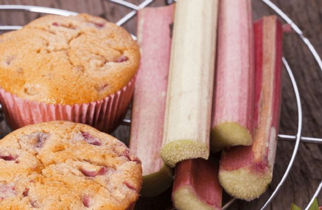 Honey - Rhubarb Muffins
