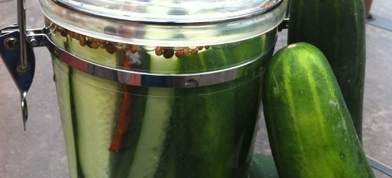 No-Salt Dill Refrigerator Pickles