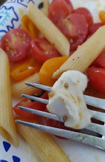 Penne with fresh tomato, basil, and mozzarella