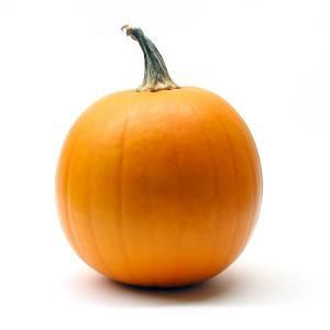 Image result for pumpkin yogurt