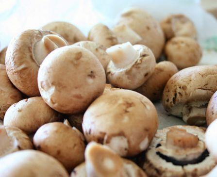Red's Creamy Mushrooms