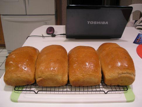 wholesome honey wheat bread