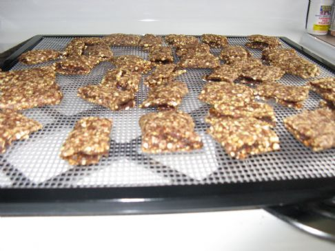 Raw Fig Newton Cookies