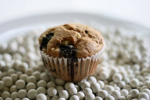 Blueberry Cottage Cheese Muffins