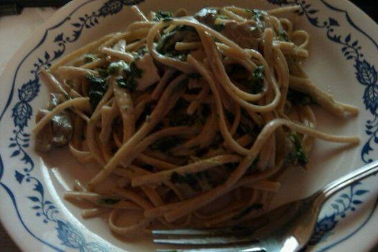 Chicken and Spinach in Garlic Alfredo sauce