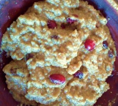 Cran-Raisin Pumpkin Pie Oatmeal (With Protein)