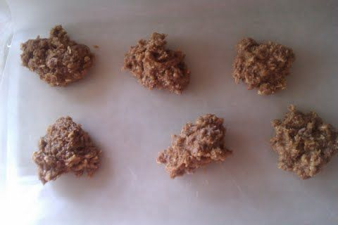 Protein No Bake Cookies