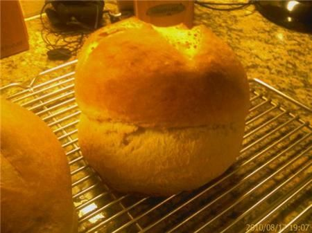 Honey Wheat Cuban Bread