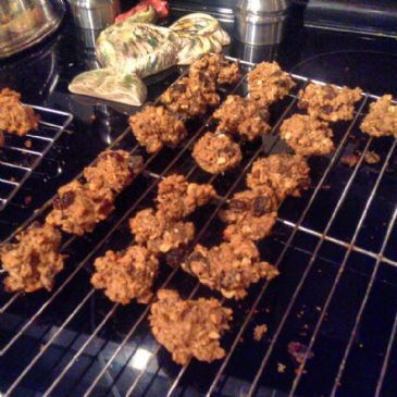 Low Carb Oatmeal Raisin Peanut Butter Cookies