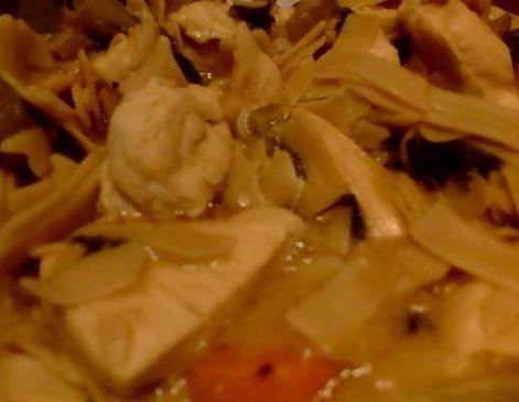 Josh's Chicken Noodle STEW