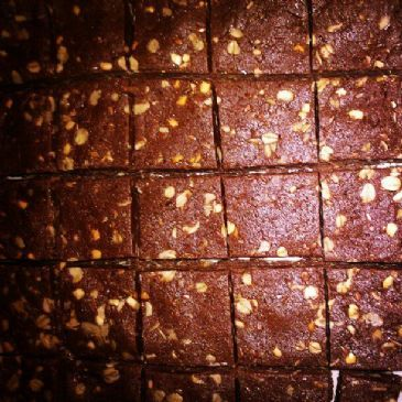 Chewy Chocolate Peanut Butter Protein Bars (No Bake)