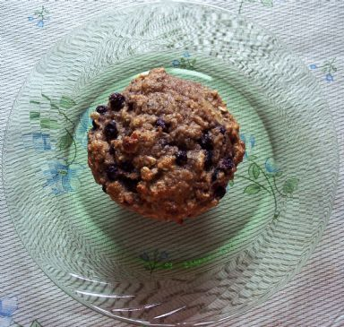Blueberry Oat Muffins (wheat free)