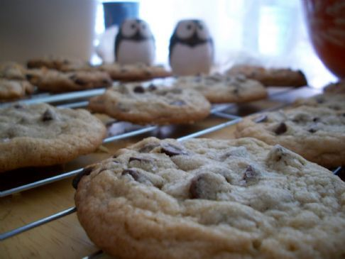 Adam's Chocolate Chip Cookies of the Gods