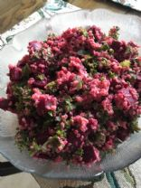 Beet Kale and quinoa salad with tahini lemon dressing