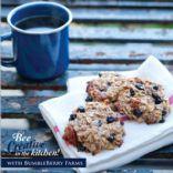 Blueberry Coconut Pecan Breakfast Cookies (GF)