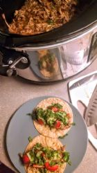 Crock Pot Pork Barbacoa