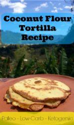 Keto Coconut Flour Tortillas/ from  primaledgehealth.com