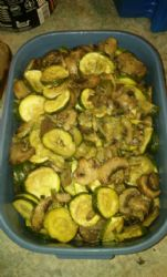 Oven roasted zucchini and mushrooms