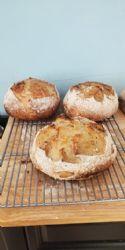 Simple Weekday Sourdough Bread