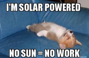 Image result for soak up the sun meme