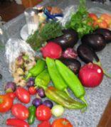 Indigo Crow Weaver's Recipes for success