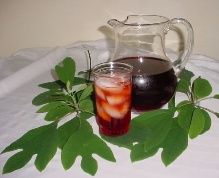 Sassafras - Traditional (Ga-Na-S-Da-Tsi) Native American Tea