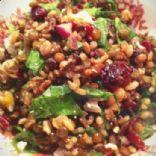 Lentil & Rice Salad w/ Spinach, Feta & Dried Cranberries
