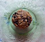Blueberry Oat Muffins (wheat free)