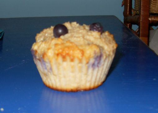 Blueberry Oat Protein Muffins
