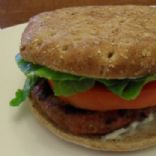 Turkey Garlic & Herb Cheese Burger