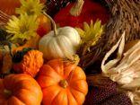 Fall/winter/holiday recipes