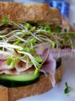 Turkey w Sprouts sandwich
