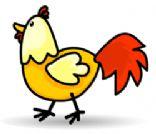 Leah's Chicken Cookbook