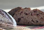 Cranberry Walnut Whole Wheat Sourdough