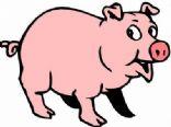Debra's Favorite Pork Recipes from SP