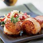 Simple Seared Scallops