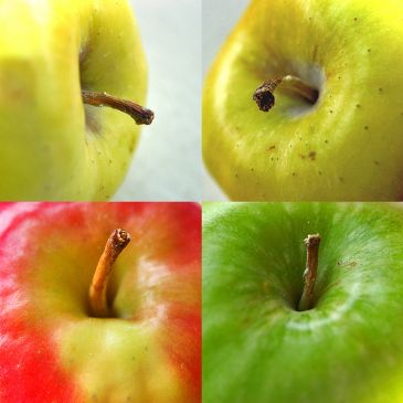 Nikki's guilt free apple pie.