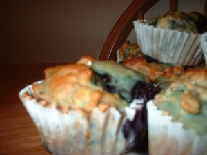 Blueberry Bran Yogurt Muffins